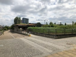 walk-thames-path-south-bank-section-3-of-4-00058